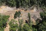 Conventional logging site in Borneo -- sabah_aerial_0657