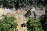 Heavy logging in Borneo -- sabah_aerial_0659