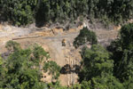 Rainforest degradation for timber production in Borneo