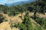 Industrial logging in Malaysian Borneo -- sabah_aerial_0665