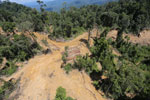 Bulldozer at a conventional logging site in Malaysian Borneo -- sabah_aerial_0667