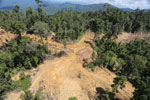 Rainforest destruction for timber production in Borneo -- sabah_aerial_0673