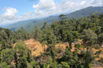 Rainforest degradation for timber production in Borneo -- sabah_aerial_0674