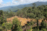 Conventional logging operation in Malaysian Borneo -- sabah_aerial_0676