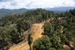 Industrial deforestation in Malaysian Borneo -- sabah_aerial_0682