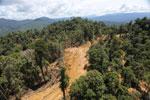Conventional logging site in Borneo -- sabah_aerial_0683