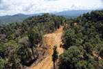 Conventional logging site in Malaysian Borneo -- sabah_aerial_0684