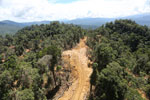 Rainforest destruction for timber production in Borneo -- sabah_aerial_0686