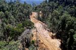 Bulldozer at a conventional logging site in Borneo -- sabah_aerial_0692