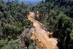 Bulldozer at a conventional logging site in Malaysian Borneo -- sabah_aerial_0693