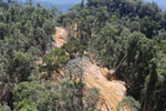 Industrial deforestation in Borneo -- sabah_aerial_0694