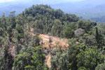 Heavy logging in Borneo -- sabah_aerial_0698
