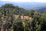 Conventional logging operation in Borneo -- sabah_aerial_0701