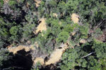 Industrial deforestation in Malaysian Borneo