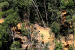 Conventional logging operation in Borneo -- sabah_aerial_0718