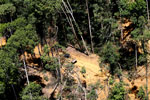 Conventional logging operation in Malaysian Borneo -- sabah_aerial_0719