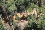Industrial logging in Borneo -- sabah_aerial_0720
