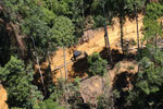 Bulldozer at a conventional logging site in Malaysian Borneo -- sabah_aerial_0723