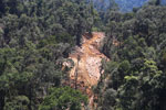 Conventional logging operation in Malaysian Borneo