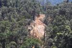 Industrial logging in Borneo -- sabah_aerial_0737