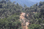 Industrial logging operation in Borneo -- sabah_aerial_0742