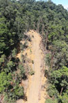 Industrial timber harvesting in Borneo -- sabah_aerial_0753