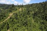 Logging road in Borneo -- sabah_aerial_0761