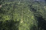 Logging road in Borneo -- sabah_aerial_0765