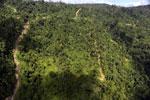Logging road in Borneo -- sabah_aerial_0767