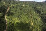 Logging road in Borneo -- sabah_aerial_0768