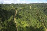 Logging road in Borneo -- sabah_aerial_0769