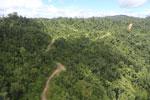 Logging road in Borneo -- sabah_aerial_0772