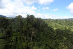 Forest heavily degraded by logging in Borneo -- sabah_aerial_0774