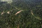 Logging road in Borneo -- sabah_aerial_0777