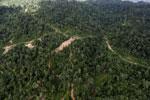 Logging road in Borneo -- sabah_aerial_0778