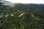 Logging road in Borneo -- sabah_aerial_0779