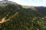 Logging road in Borneo -- sabah_aerial_0784