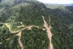 Logging road in Borneo -- sabah_aerial_0787