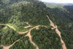 Logging road in Borneo -- sabah_aerial_0788