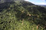 Logging road in Borneo -- sabah_aerial_0792