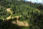 Logging road in Borneo -- sabah_aerial_0797