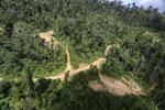 Logging road in Borneo -- sabah_aerial_0798