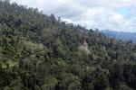 Borneo rainforest -- sabah_aerial_0801