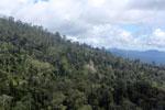 Borneo rainforest -- sabah_aerial_0802
