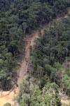 Logging road in Borneo -- sabah_aerial_0811