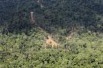 Logging road in Borneo -- sabah_aerial_0817