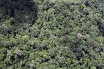 Borneo jungle -- sabah_aerial_0821