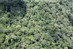Borneo rain forest -- sabah_aerial_0822
