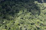 Borneo rain forest -- sabah_aerial_0824