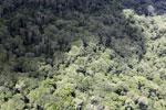 Borneo rain forest -- sabah_aerial_0826